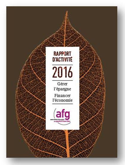 Rapport d'activité AFG 2016